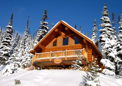 Winter Mountain Chalet